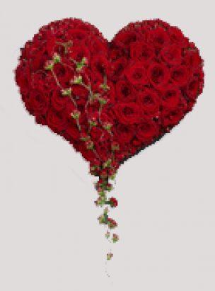 Hjerte Rodt